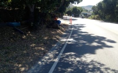 2016: Pathway Safety Project
